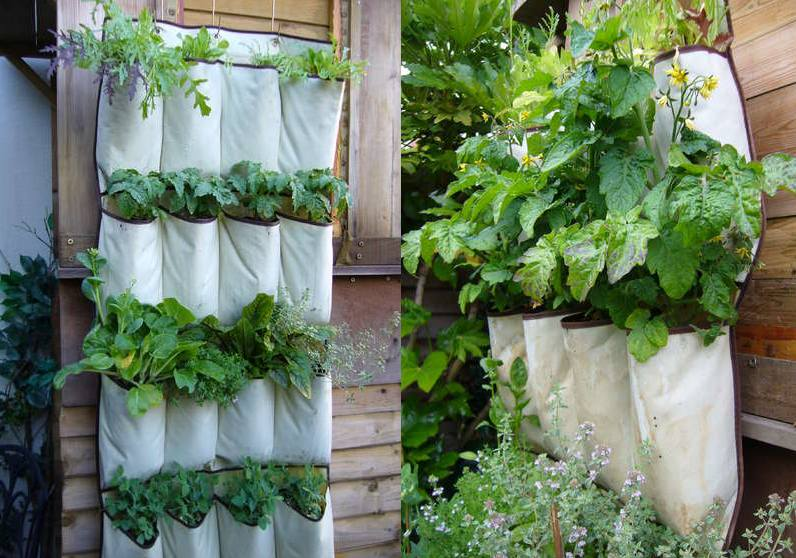 4 Amazing Vertical Garden Designs For Growing Veggies In Any Space