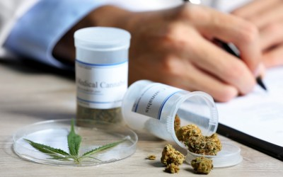 Buy medical marijuana online : Why Cannabis Medical Use is Exploding?