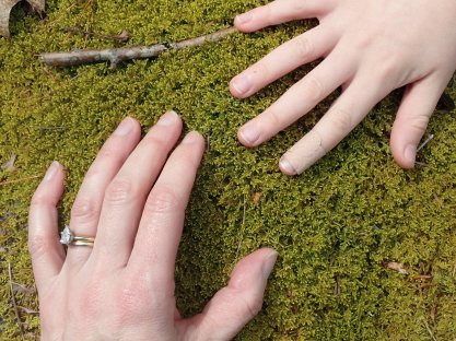 Noticing Nature: Nature Prompts - April 2016