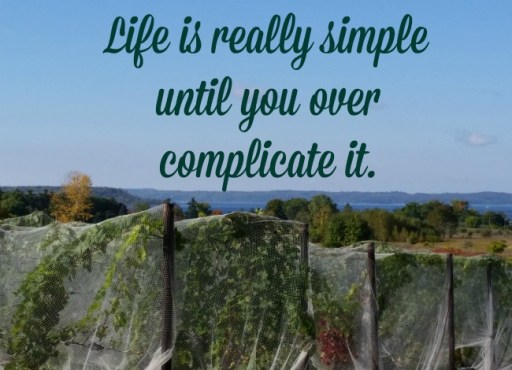 Life is really simple until you over complicate it. #Quote
