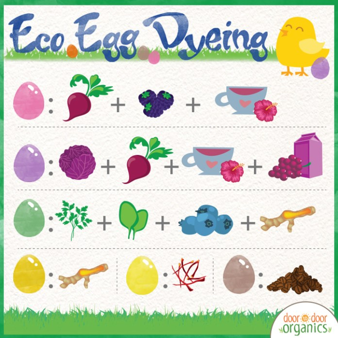 Skip the chemical dyes and create DIY dyes that are kid-friendly and eco-friendly. Learn how easy it is to make your own colorful eco-eggs. Hashtags to use: #easteregg #crafts #easter #doortodoororganics #joydelivered.