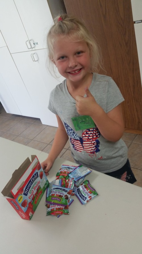 Stonyfield Organic Fruit Snacks - Kid Approved