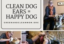 How to Clean Your Dog's Ears Naturally