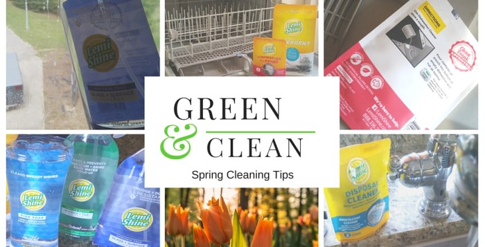 Green and Clean Spring Cleaning Tips and Tricks with Coupons