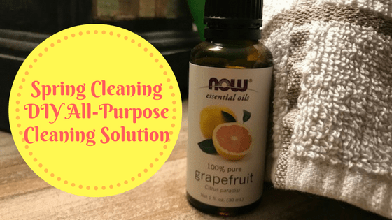 DIY Spring Cleaning All-Purpose Cleaning Solution