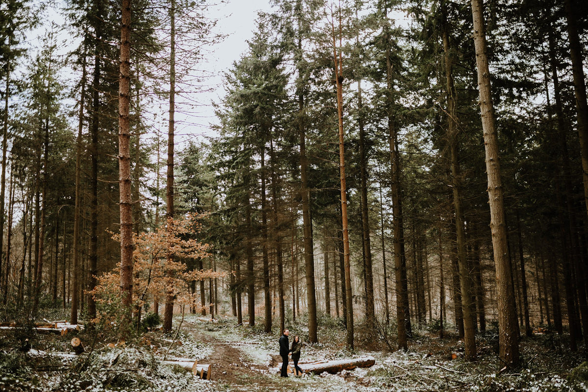 wide forest image of Wyre Forest during engagement session