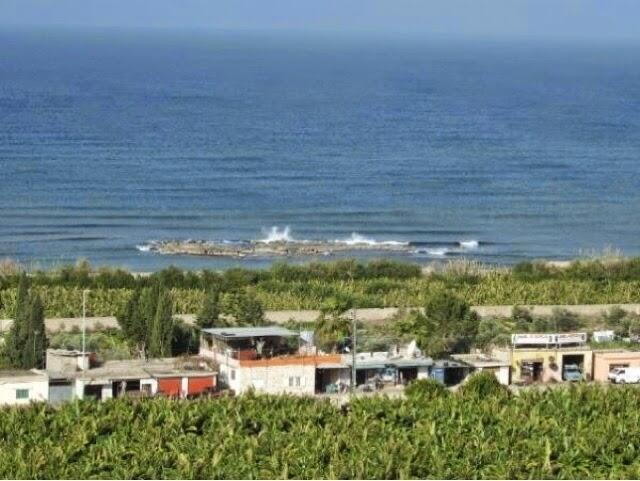 جمعية الجنوبيون الخضر: لإعلان شاطئ عدلون محمية طبيعية وأثرية