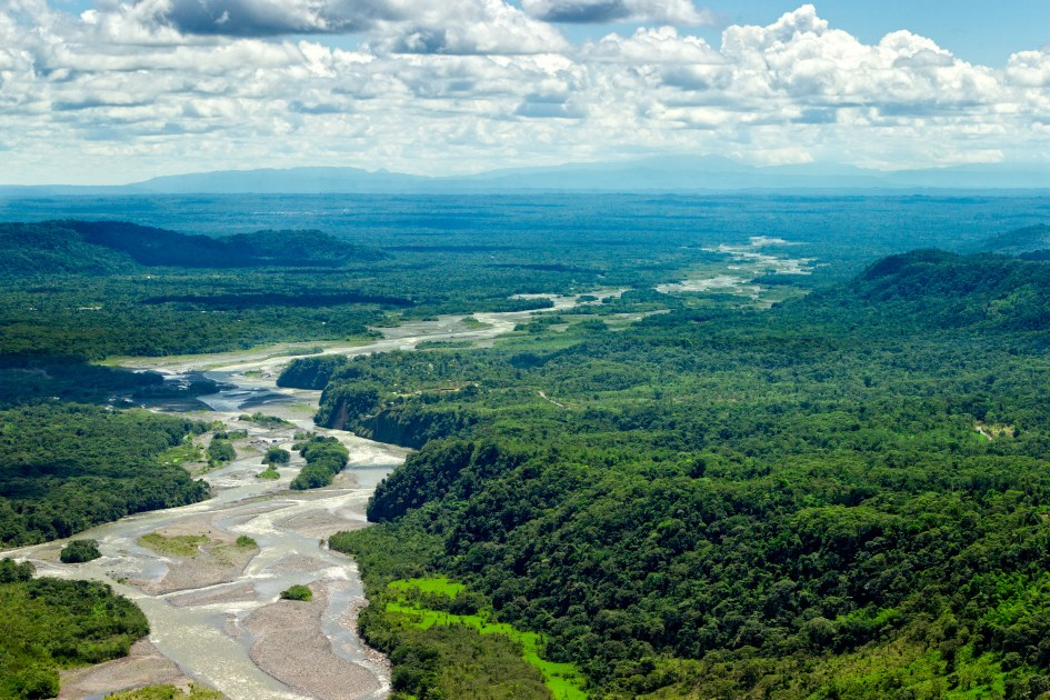 Scientists claim that the oil threatens 745 species in the Amazon