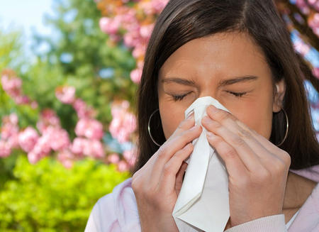 Hayfever wave of climate change