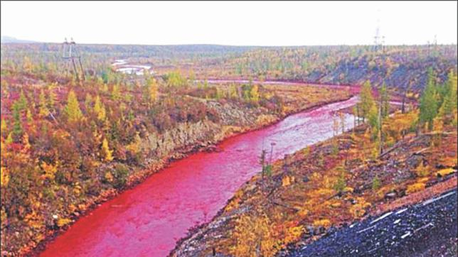 The Three Shocking Rs Russian Red River Farah Daou GreenAreame - River in russia