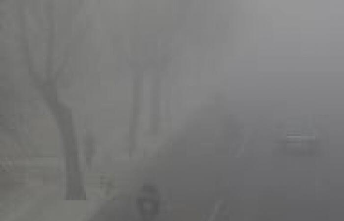"""زراعة """"عقد أخضر"""" حول العاصمة الصينية لحمايتها من التلوث"""