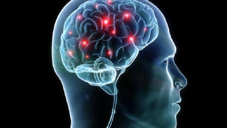 تأثيرات جديدة لعدوى الهربس على الإنسان