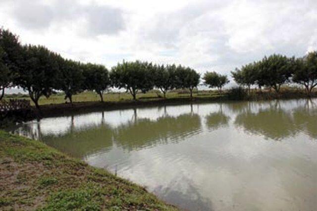 تأهيل بحيرة محمية اهدن بعد أضرار ثلوج الشتاء