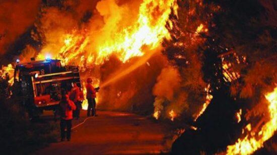 حريق البرتغال: مأساة إنسانية وبيئية غير مسبوقة