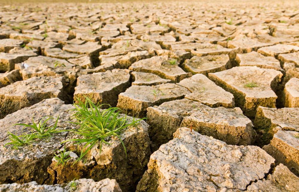تحديث نظام إنذار مزارعي البقاع للتكييف مع تغير المناخ