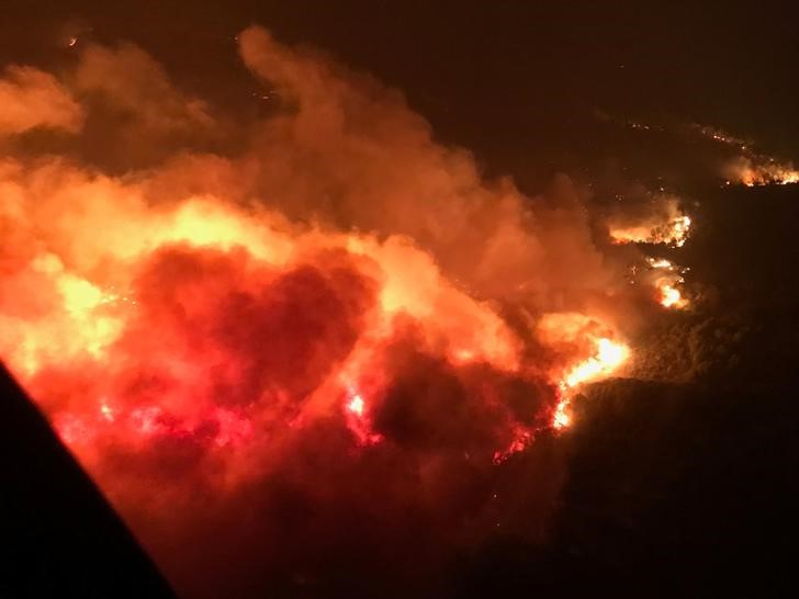 مقتل 23 على الأقل  في حرائق غابات بكاليفورنيا