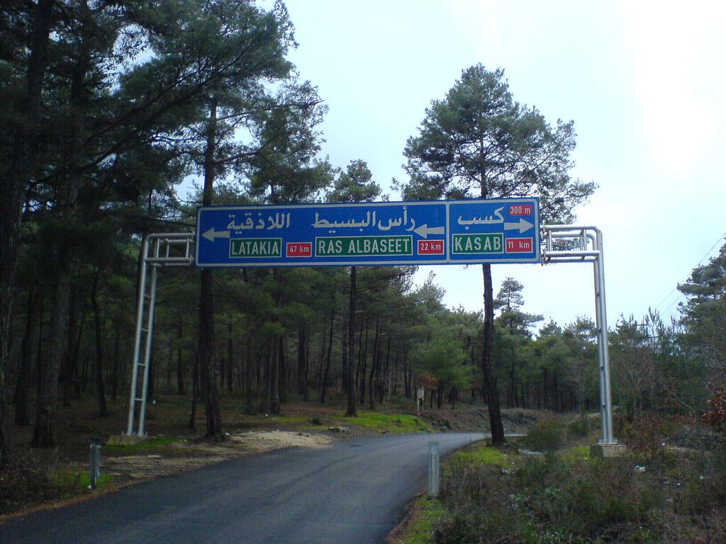 غياب استراتيجية إعادة تأهيل الغابة السورية
