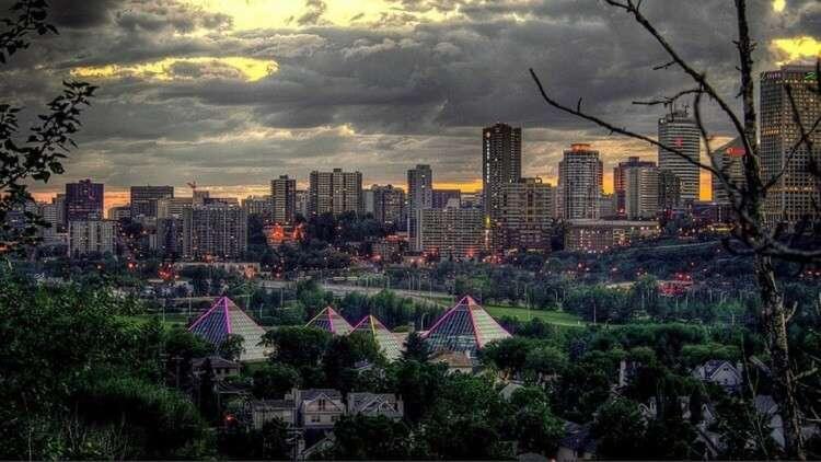 الأشجار في المدن الكبيرة تنمو أسرع منها في الأرياف