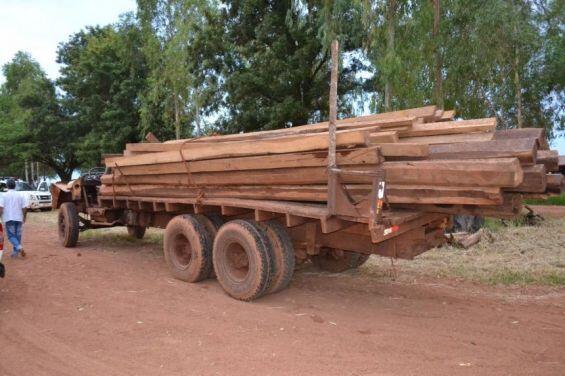 30 tonnes de bois extrait illégalement en Amazonie