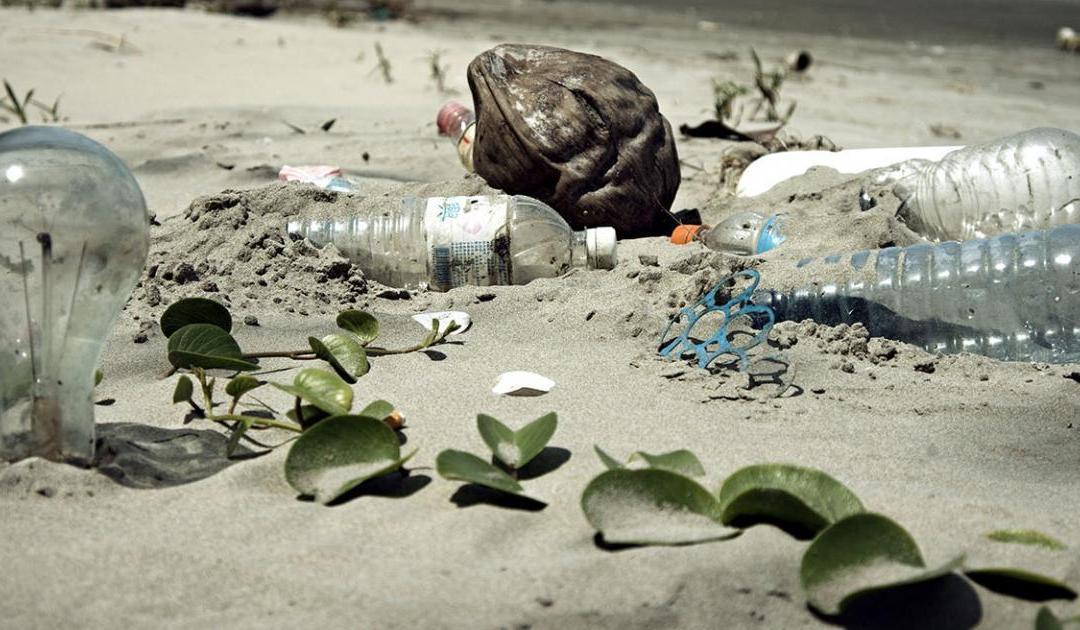 حلول متوقّعة لستة مشاكل بيئية عالمية !
