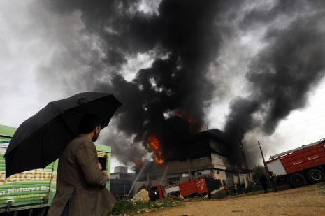 حريق المكلّس: الخسارة الأكبر… بيئية