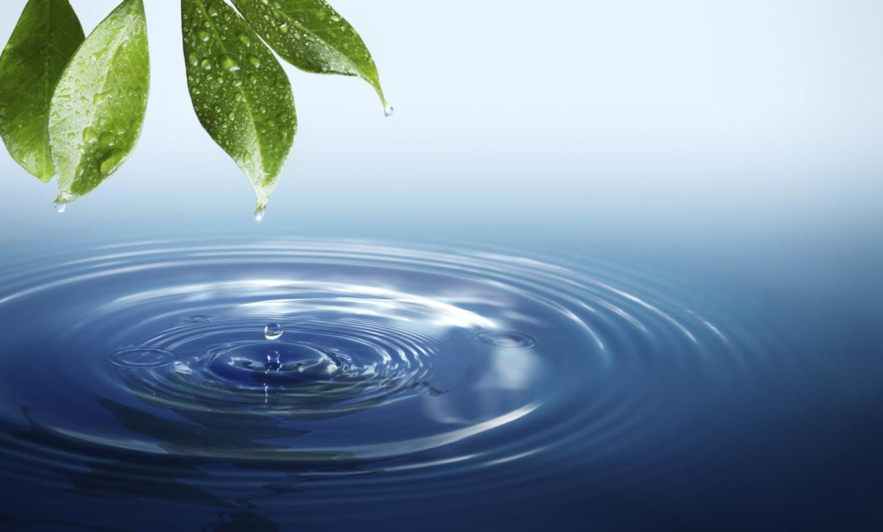 إنتخابات لبنان واليوم العالمي للمياه