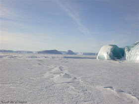 القارة القطبية الجنوبية هي القارة الوحيدة في العالم التي لا توجد بها أرض يابسة، بل تتألف من طبقة جليدية