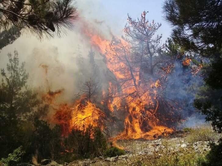حريق القبيات مستمر والطوافات العسكرية عاودت المساعدة