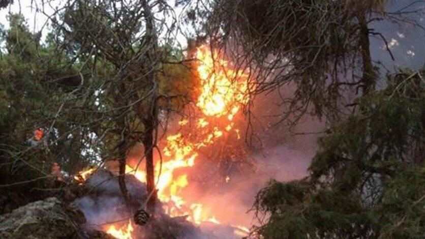 النيران مستمرة في التهام غابات القبيات