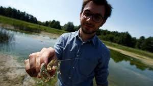 جراد البحر يهدد التوازن البيئي في المياه العذبة بألمانيا