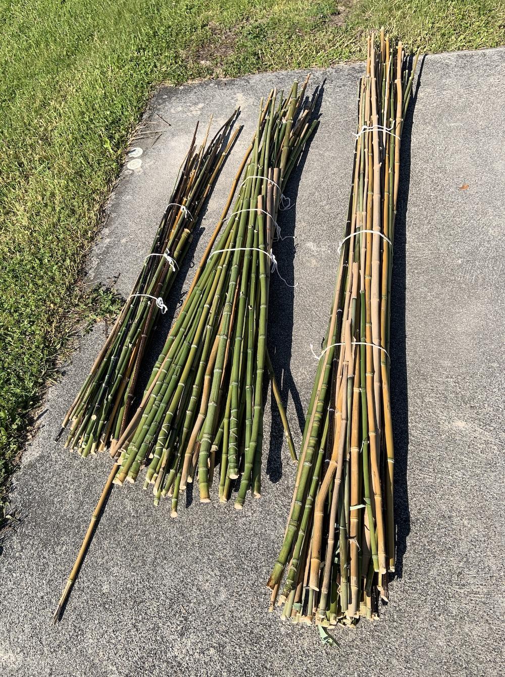 Faire Une Palissade En Bambou : faire, palissade, bambou, Comment, Construire, Palissade, Cultiver, Légumes, Greenastic
