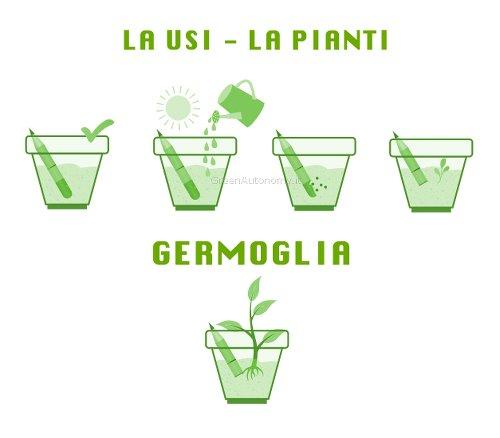 Ecomatita sprout sfusa da piantare top come regalo e gadget originale