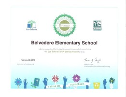 We are a certified Eco-School (Bronze Award).
