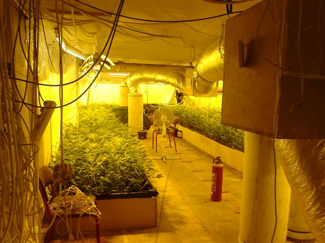 Hydroponic Grow Shops & Garden Centers
