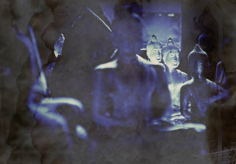 A Kind of Blue - Experiments in Cyanotype