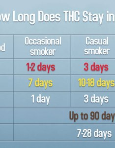 Chart how long does thc stay in your system also here   weed and edibles rh greencamp