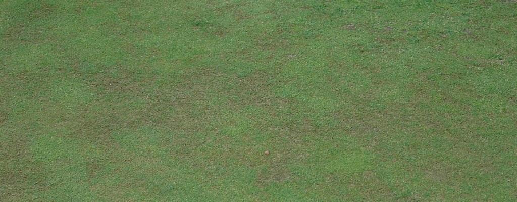 Golf course renovations