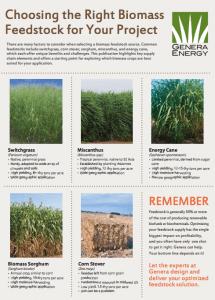 Genera Biomass Infographic