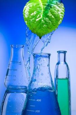 Growing bio-based solvent market | Green Chemicals Blog