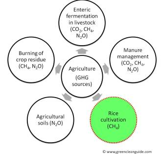 Sources of GHG emission from Agriculture