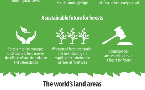Forest and Land Use - Infographic by FAO
