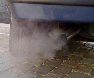 Automobile exhaust gas