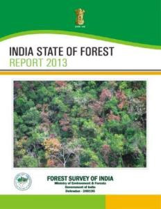 State of Forest Report 2013