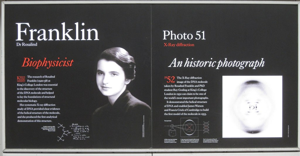 franklin rosalind 1920 1958 essay Rosalind franklin: the dark lady of in 1968 rosalind franklin (1920-1958) maddox's biography draws from not only the many scientific archives and personal papers of scientists franklin worked with in england, europe, and america.
