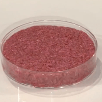 lab grown meat
