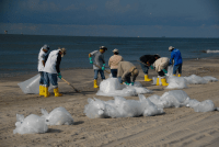 Cleaning of Beaches