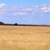 The Plainsrunner - Chapters 7 & 8
