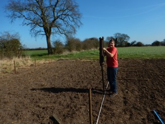 Whacking posts in...