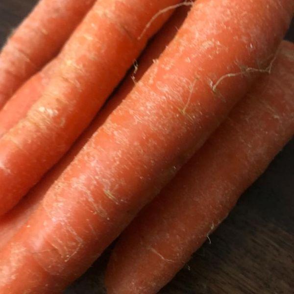 Daucus carota subsp. sativus: Carrot