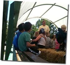 jubelee farm 002